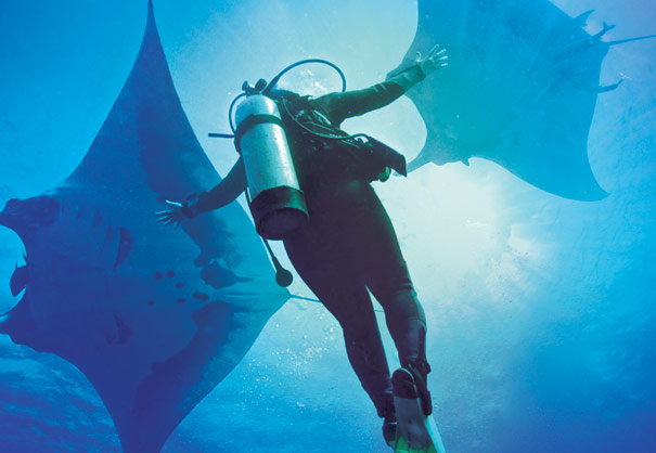 A diver interacting with two giant mantas at Socorro